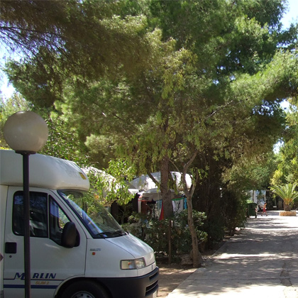 The caravans of Camping Egad